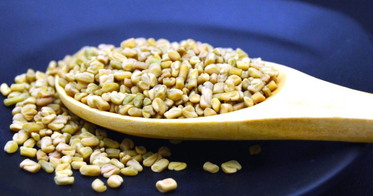 Fenugreek (Methi)