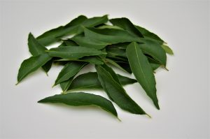 curry-leaves