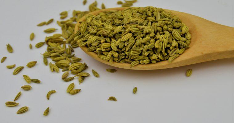 Fennel Seeds (Saunf)