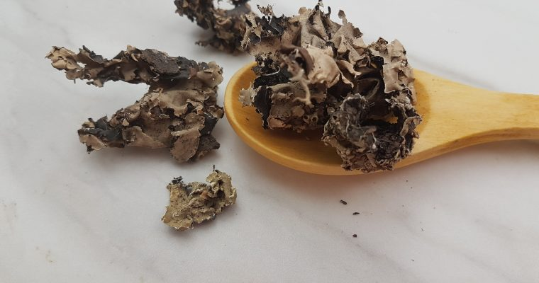 Kalpasi (Dagad phool / Black stone flower)