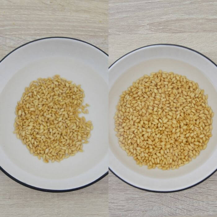 before and after soaking wheat berry in a bowl.