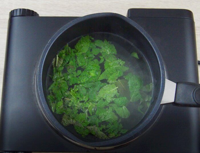 combine mint leaves in hot water.