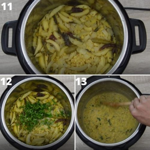 process of addition salt and coriander to cooked mango dal.